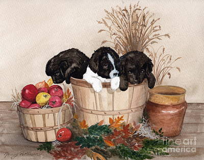 Newfoundland Puppy Painting - Bushel Of Fun  by Nancy Patterson