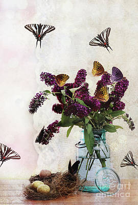 Water Jars Photograph - Butterfly Haven by Stephanie Frey