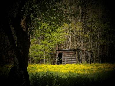 Cabin In The Flowers Print by Joyce Kimble Smith