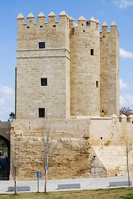 Calahorra Tower In Cordoba Print by Artur Bogacki