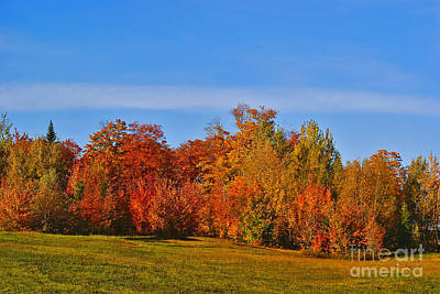 Of Autumn Photograph - Canada In Colors by Aimelle