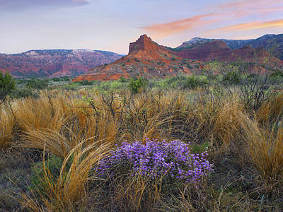 Caprock Canyons State Park Texas Print by Tim Fitzharris