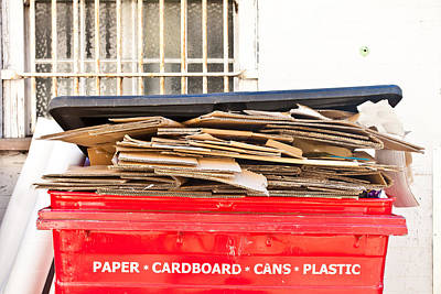 Cardboard Photograph - Cardboard  by Tom Gowanlock