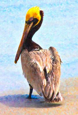 Pelican Digital Art - Carlos by Betsy Knapp