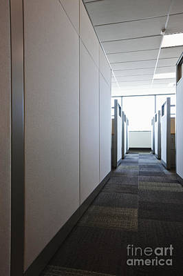Florescent Lighting Photograph - Carpeted Hall With Office Cubicles by Jetta Productions, Inc
