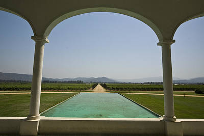 Casablanca Valley, A Wine Growing Print by Richard Nowitz