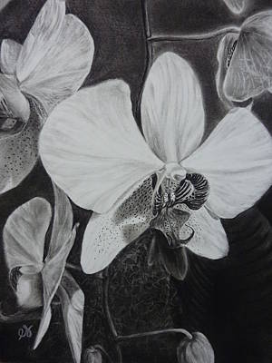 Cascade Of Orchidds Print by Estephy Sabin Figueroa
