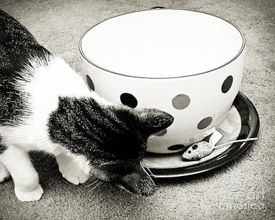 Kitty Photograph - Cat And Mouse Coffee by Andee Design