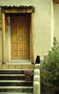 Sante Fe Photograph - Cat Post by Brent L Ander