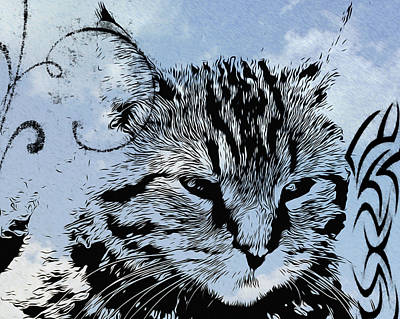 Kitten Digital Art - Catawampus by Bill Cannon