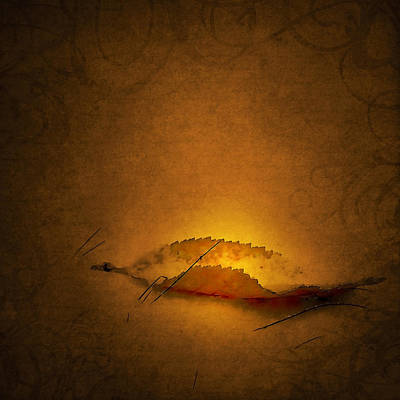 Catching The Light Print by Svetlana Sewell
