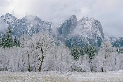 Cathedral Rocks And Trees Print by Marc Moritsch