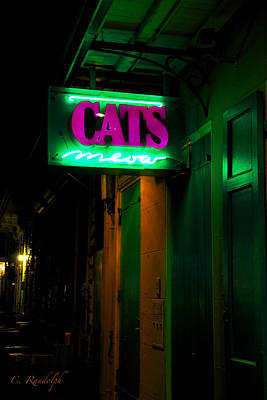 Cat's Meow Print by Cheri Randolph
