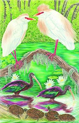Ibis Drawing - Cattle Egrets With Ibis by Tim McCarthy