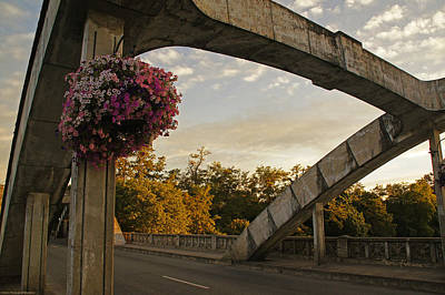 Caveman Bridge Arch And Flowers Print by Mick Anderson