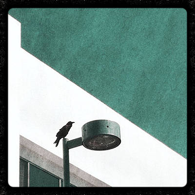 Streetlight Photograph - CAW by Kevin Bergen
