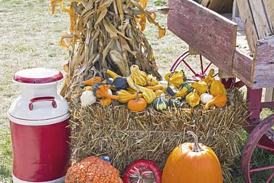 Celebrating Fall Print by Wayne Stabnaw