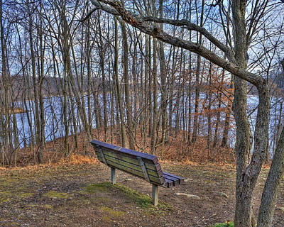 Centennial Lake Bench Print by Stephen Younts