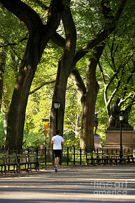 Central Park Jogging Print by Brian Jannsen
