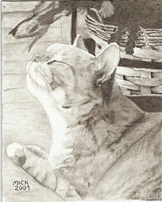 Cepheus Print by Mick Hogan