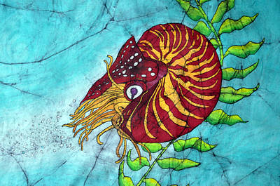 Chambered Nautilus Print by Shari Carlson