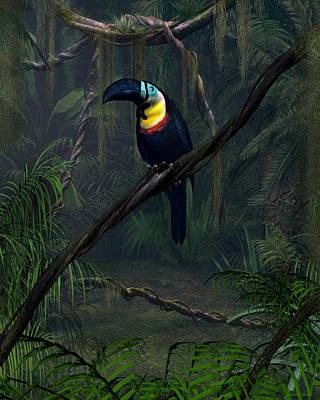 Toucan Digital Art - Channel Billed Toucan by Walter Colvin