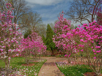 Photograph - Cheekwood Gardens by Charles Warren