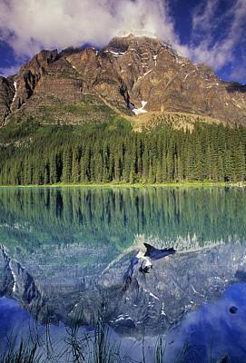Chephren Lake And Mt. Chephren, Banff Print by Darwin Wiggett