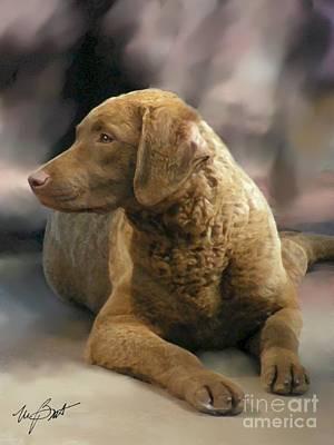 Retrievers Digital Art - Chesapeake Bay Retriever Pup by Maxine Bochnia