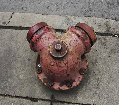 Chicago Hydrant Print by Todd Sherlock