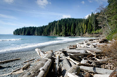 Juan De Fuca Provincial Park Photograph - China Beach Vancouver Island Juan De Fuca Provincial Park by Andy Smy