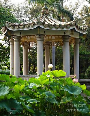 Peaceful Symbols Photograph - Chinese Pavilion In A Lotus Garden by Yali Shi