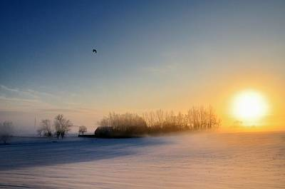 Christmas Sunset Print by Pierre Hanquin Photographie