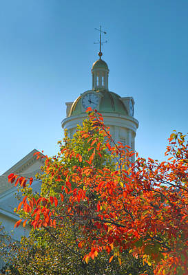 City Hall Dome And Tree  Print by Steven Ainsworth