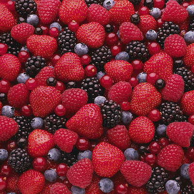 Y120817 Photograph - Close-up Of Freshly Picked Mixed Berries by Andrew Bret Wallis