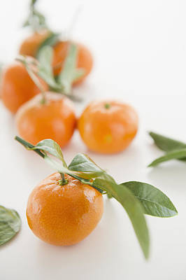 Close Up Of Tangerines With Leaves, Studio Shot Print by Jamie Grill