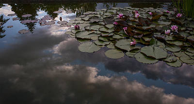 Clouded Pond Print by Mike Reid