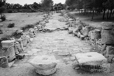 Colonnaded Street In The Ancient Site Of Salamis Famagusta Turkish Republic Of Northern Cyprus Trnc Print by Joe Fox