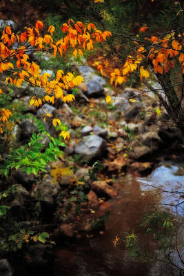 Colors On The Creek Print by Toni Hopper