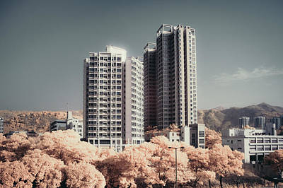 Y120817 Photograph - Concrete Highrise Buildings by Yiu Yu Hoi