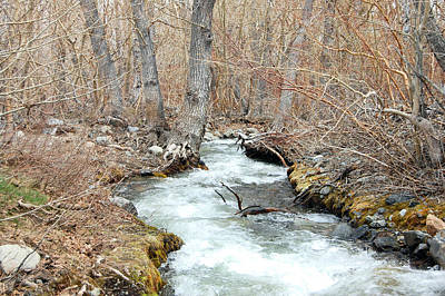 Crowley Lake Photograph - Convict Creek by Kirk Williams
