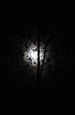 Cool Moon Print by Julian Bralley