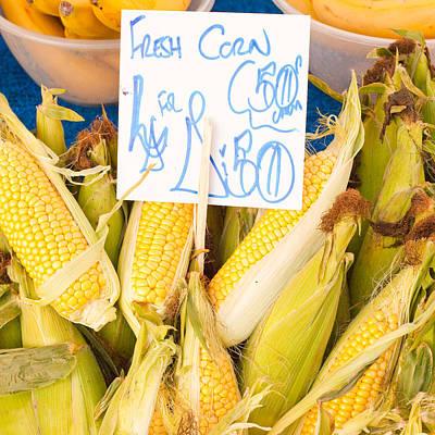 Corn Print by Tom Gowanlock