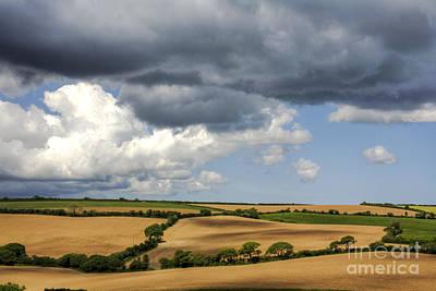 Landscape Photograph - Cornfield Mosaic by Heiko Koehrer-Wagner