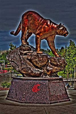 Butch Photograph - Cougar Pride by David Patterson