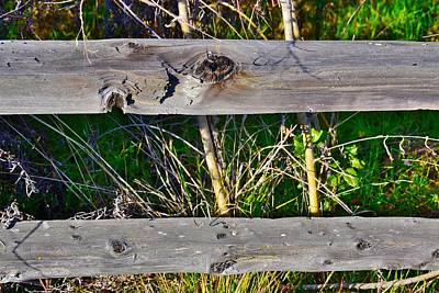 Country Fence Original by Bill Owen