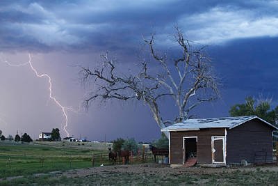 Country Horses Lightning Storm Ne Boulder County Co  63 Print by James BO  Insogna