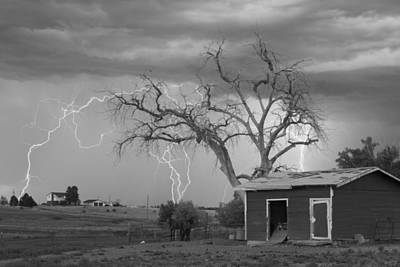 Country Horses Lightning Storm Ne Boulder County Co  76bw Print by James BO  Insogna