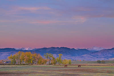 Horse Photograph - Country Morning by James BO  Insogna