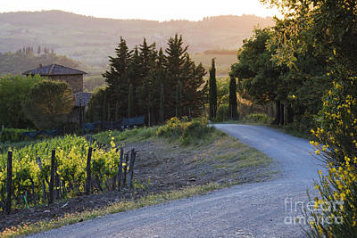 Country Road At Sunset Print by Jeremy Woodhouse